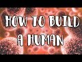 Download Youtube: How to Build a Human