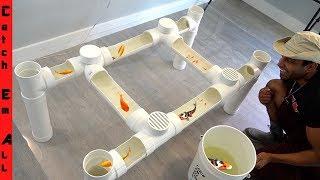 FISH TABLE AQUARIUM **Cheap Diy Step By Step PVC PIPE Build At Home*