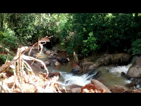 Cachoeira do capoeirão. Antônio Prado de Minas