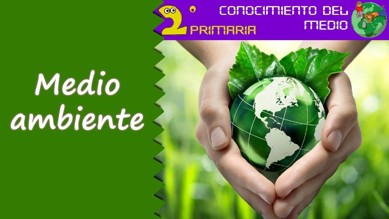 Cono, 2º Primaria. Tema 8. El medio ambiente