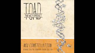 Toad the Wet Sprocket - I´m Not Waiting