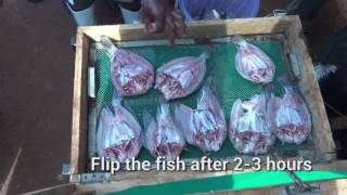 Post-harvest Fish Handling and Technologies
