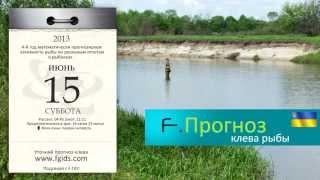 Клев рыбы в украине по областями
