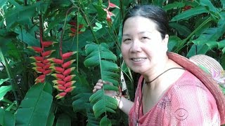 An American businesswoman convicted of espionage is deported from China