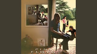 Pink Floyd Careful with that Axe Eugine Live Music