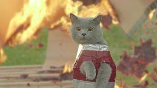 Iron Cat 2 - Video Youtube