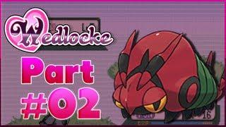 Venipede  - (Pokémon) - Pokemon Manly Pink Wedlocke - #2 The die hard Venipede.