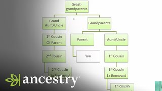 What is a First Cousin Once Removed? | Ancestry