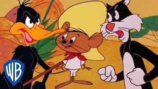 Looney Tunes   Best of Speedy Gonzales   Classic Cartoon Compilation   WB Kids
