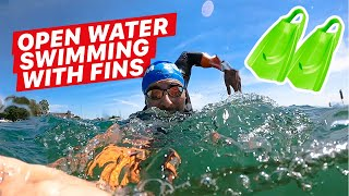 Open Water Swimming: DON'T DO THIS!