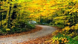 A Musica Do Outono - Linda