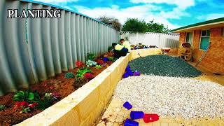 Installing a Succulent Garden