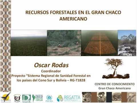 Recursos forestales en el Gran Chaco americano