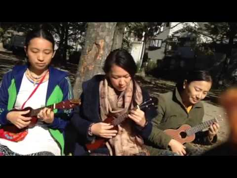 Hare Krishna Maha Mantra on The Rose /Ukulele kirtan
