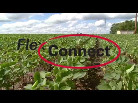 FlexConnect How-To Demonstration