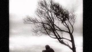 Cold Again -- Freedy Johnston
