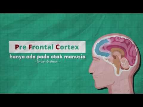 Gejala prostatitis dan impotensi