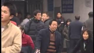 """天网 天网 2010年 第139期 """"毒计""""九连环"""