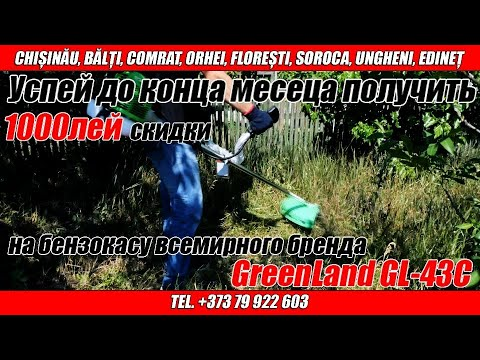 Trimmer pentru gazon pe benzina GREENLAND GL-43C