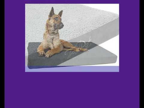 Hundematratzen - Tolle und bequeme Matratzen für Hunde