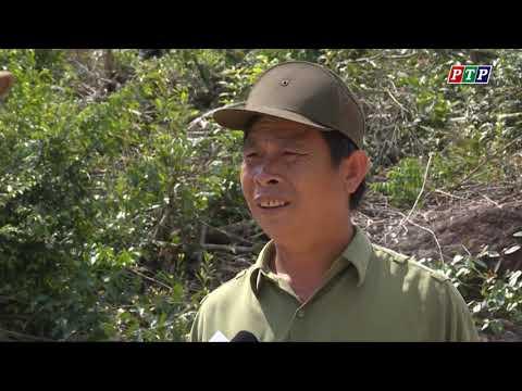 Phóng sự: Phòng Cháy chữa cháy rừng vào mùa khô