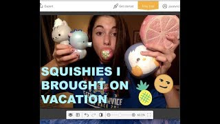 SQUISHIES I BROUGHT ON VACATION!! | Puni Maru, Creamiicandy...
