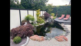 4000 Gallon Japanese Koi Pond. STUNNING POND!!