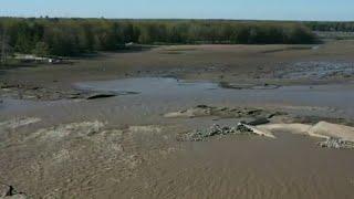 Flood destroys auto museum, scatters cars across Sanford