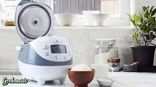 Yum Asia Panda Mini Rice Cooker Review