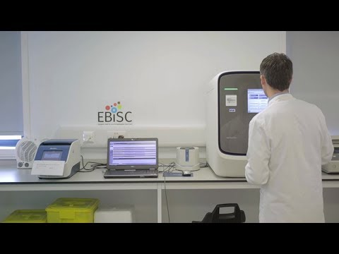 European Bank for induced Pluripotent Stem Cells