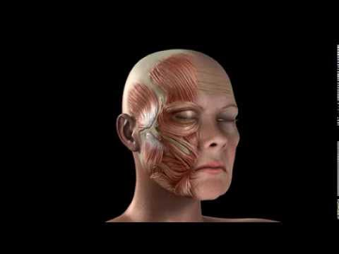 Maschere per pelle di faccia secca e sottile