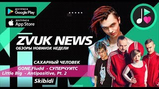 ZVUK NEWS - Обзоры GONE.Fludd - Суперчуитс, Сахарный человек | Little Big - Antipositive, Pt. 2