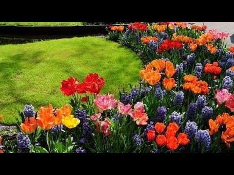 , title : 'My Garden Flowers!