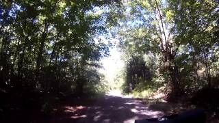 Stewart State Forest, Drakes Lane Singletrack