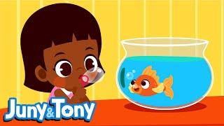 Animal Friends   My Little Pet   Animal Songs for Kids   Preschool Songs   Juny&Tony by KizCastle