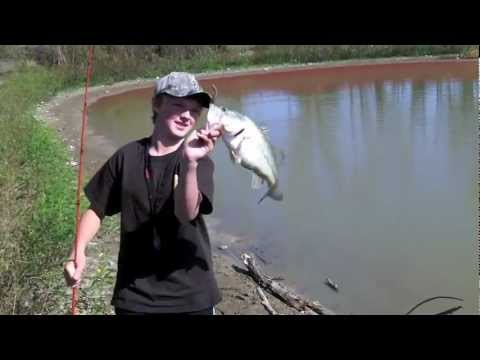 Small Pond Bass Fishing