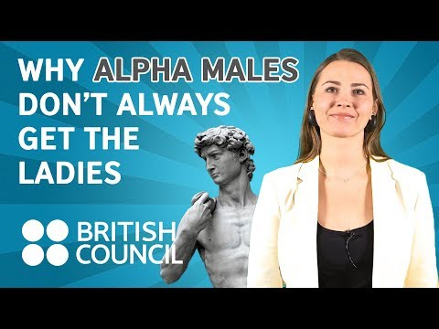 Why alpha males don't always get the ladies