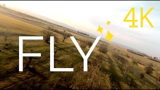 FLY - Cinematic FPV Drone and Wing Chase