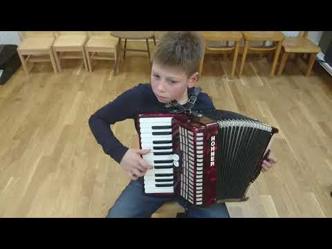 Despacito accordion- cover (10 year's)