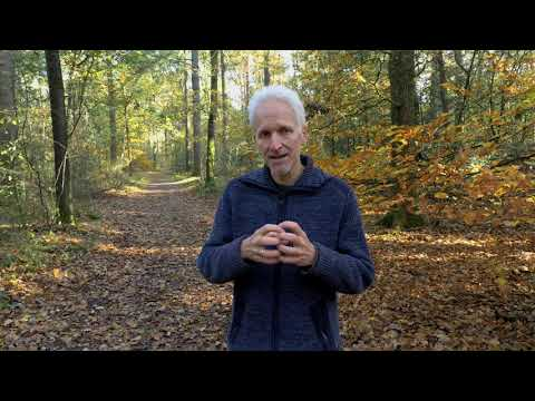 Bos, bodem en biodiversiteit, de voordelen van het voedselbos.