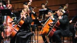 """Симфония №9 """"Ода к радости"""", 2011"""