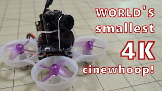 World's Smallest 4K Cinewhoop! ????