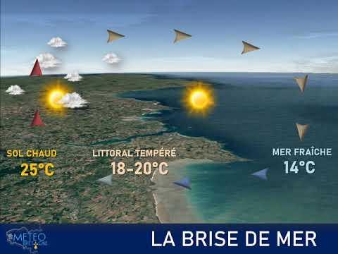 Illustration de l'actualité La brise de mer, un phénomène qui sera fréquemment observé sur nos côtes cette semaine