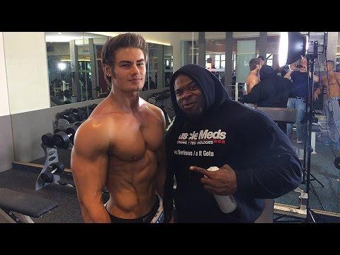 Les muscles pectoraux le repos