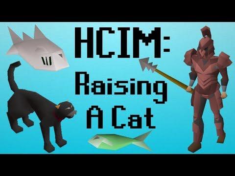 [OSRS] HCIM 5: Raising A Cat (709/2277)