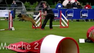 preview picture of video 'Agility Berger Belge Malinois, Championnat de France 2012'