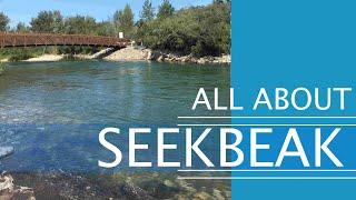 SeekBeak video