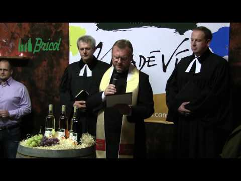 Mladé vína vo Víne Nitra