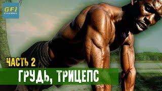 Тренировка Ганнибала Фор Кинга. Часть 2: Качаем грудь, трицепс (ТОЛЬКО НАТУРАЛЬНО!)