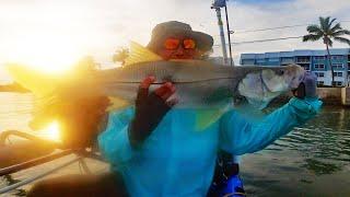 Триггер рыболовный для чего